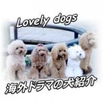 海外ドラマ 犬
